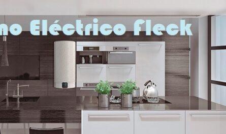 Termo Eléctrico Fleck